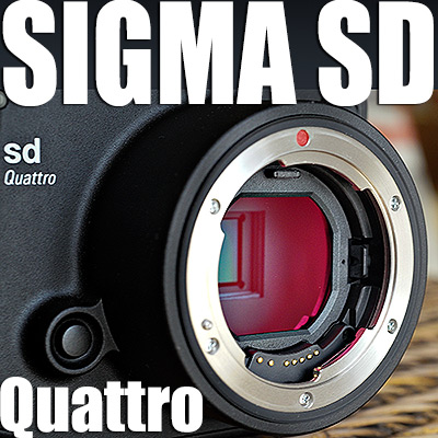 Test Sigma SD Quattro